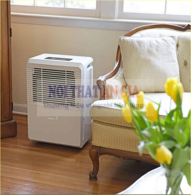 Máy hút ẩm trong nhà giúp giải quyết các vấn đề